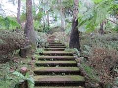 mystical-stairs van pixabay com